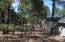 3165 N Meadow Brook Drive, Flagstaff, AZ 86004