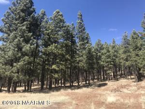 500 N Circle View Drive, Flagstaff, AZ 86001