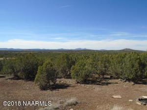 2233 N Dortha Drive, Ash Fork, AZ 86320