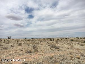 3533 W Singletree Road, Williams, AZ 86046