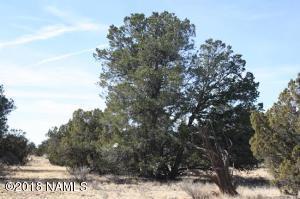 4313 E Woodland Ranch Road, Williams, AZ 86046