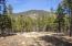 4100 N Wildcat Trail, Flagstaff, AZ 86001