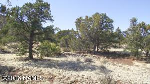 1660 Lot 1 E Spring Valley Road, Williams, AZ 86046