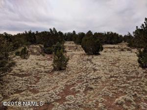 478 E Wampum Lane, Williams, AZ 86046
