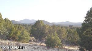 2877 E Cedar Mountain Road, Williams, AZ 86046