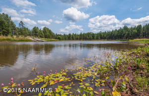 Private swiming and fishing lake surrounded by National Forest on two sides.