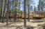 5420 E Mt Pleasant Drive, Flagstaff, AZ 86004