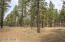 0 N Belle Springs Ranch Road, Flagstaff, AZ 86001