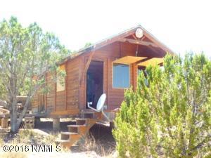 31625 W La Gatito Lane, Seligman, AZ 86337