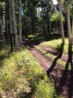 0 Forest Serivce Rd 151, Flagstaff, AZ 86001
