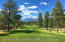 Pine Canyon Golf Course - 18th fairway view of San Francisco Peaks,