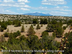 6046 Black Burro Loop, Williams, AZ 86046