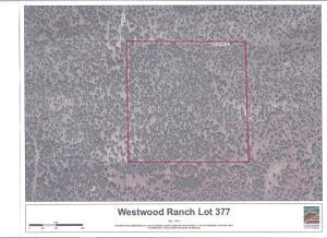 377 Westwood Ranch Lot 377, Seligman, AZ 86337