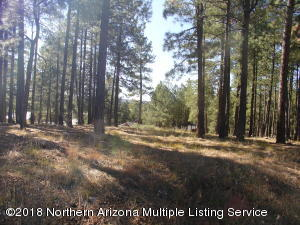 2128 Cecil Richardson, Flagstaff, AZ 86005