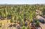 Aerial of Backyard backing undeveloped land