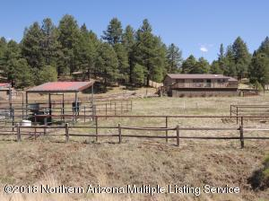 Horse Property in the Cool Pines!