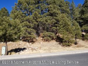 3407 S Litzler Drive, Flagstaff, AZ 86005