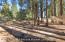 2270 Isabella, Flagstaff, AZ 86005