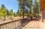 1719 E Elysian Court, Flagstaff, AZ 86005