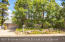 4341 E Burning Tree Loop, Flagstaff, AZ 86004