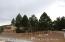 1568 E Sejarez Way, Flagstaff, AZ 86003