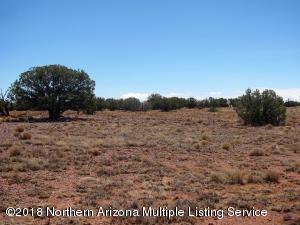 Cr 8572 Woodridge Ranch-Unit 10, Concho, AZ 85924