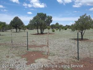 0000 Bluebell, Williams, AZ 86046