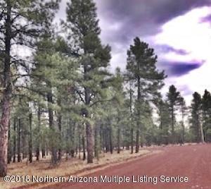 290 N Lakeview Drive, Williams, AZ 86046