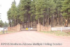 1555 Pine Meadow Drive, Williams, AZ 86046