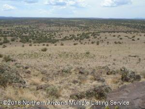 6518 W Deer Forest Drive, Williams, AZ 86046