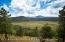 3470 W Lead Rope, 64, Flagstaff, AZ 86005