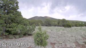 7401 N Rocky Ridge Road, Williams, AZ 86046