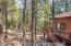4620 Griffiths Spring, Flagstaff, AZ 86005