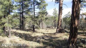 1614 Canyon View Loop, Williams, AZ 86046