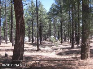 9649/9715 E Forest Service 713 Road, Parks, AZ 86018