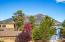 2798 N Rio De Flag Drive, Flagstaff, AZ 86004