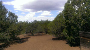 7330 N Pinon Pine Street, Williams, AZ 86046
