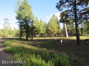 22958 Fox Ranch Road, Lot 4, Munds Park, AZ 86017