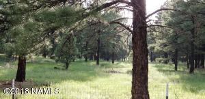 5447 Lene Lane, Flagstaff, AZ 86004