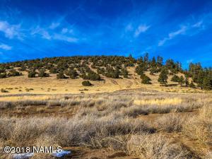 9077 Richfield Drive, Flagstaff, AZ 86004