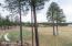 1741 E Bent Tree Circle, 56, Flagstaff, AZ 86005