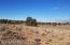 2028 S Hollyhock Lane, Valle, AZ 86046
