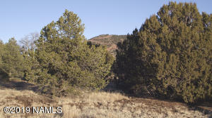6601 N Santa Fe Road, Williams, AZ 86046
