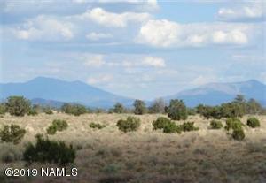 2563 South Rim Ranch Road, Williams, AZ 86046