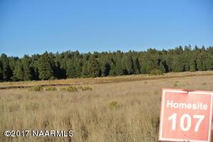 8985 Richfield Drive, Flagstaff, AZ 86004