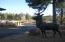 4675 S Flagstaff Ranch Road, 119, Flagstaff, AZ 86005