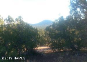 Heavily Treed 5.74 Acre Parcel