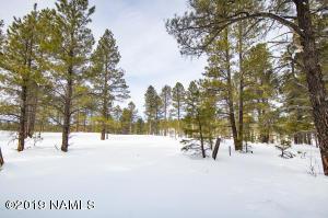 3710 Iroquois, Flagstaff, AZ 86005