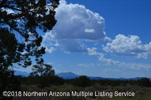 3927 Mohave Trail, Williams, AZ 86046