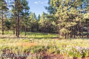 13314 Kings Deer Road, Parks, AZ 86018